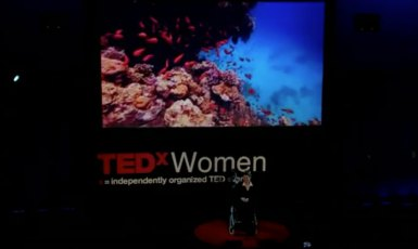susan-austin-ted-speech-wheelchair