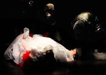 lo scarafaggio e la farfalla prina nazionale teatro camploy verona