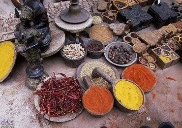 spezie india