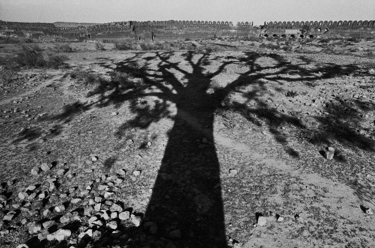 Rene-Burri-Ombra-di-un-albero-Rohtas-Pakistan-1963