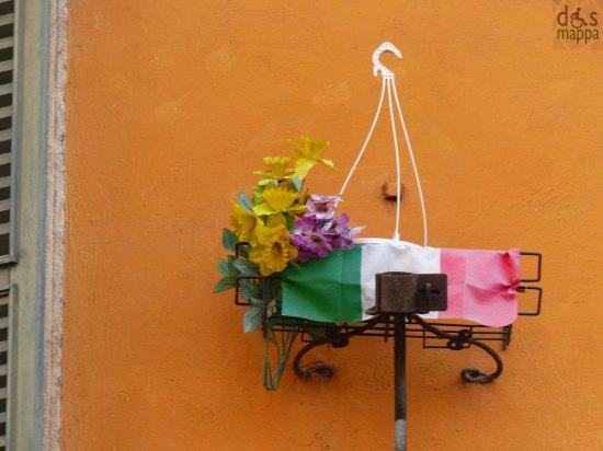 tricolore e fiore