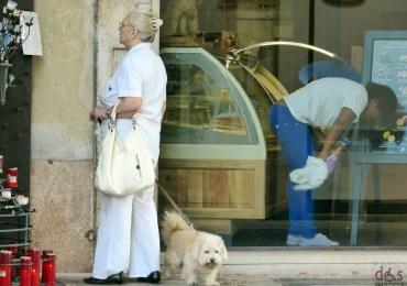 signora-cane-altare-pulisci-vetri