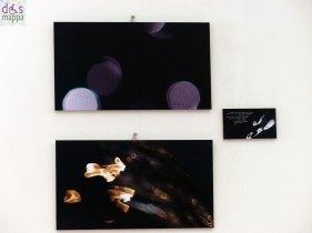 Opera sull'Acqua mostra fotografica di Carlo Malacchini Spazio culturale Fondazione San Zeno Sotto la lente d'ingrandimento, l'acqua rivela venature e trasparenze, scopre forme e colori in un rapporto intimo con l'autore, per scomporsi e ricomporsi in tutte le sue sfaccettature e per esplodere, infine, in una danza che è la danza della vita.