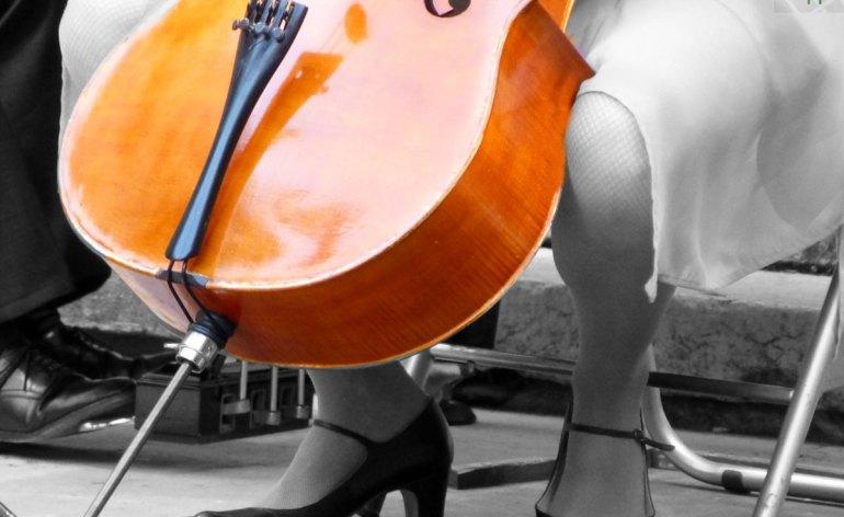 2012-viola-salonmusik-verona
