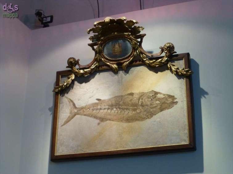 20130207 Museo di Storia Naturale Verona accessibile dismappa 787