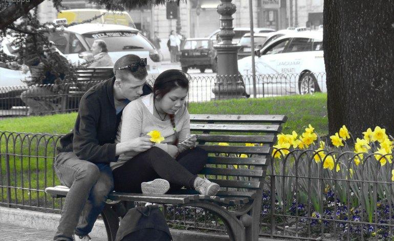 201403 Coppia Piazza Bra Narcisi gialli