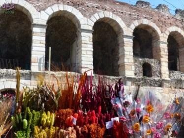20140329 Verona in fiore Piazza Bra 73