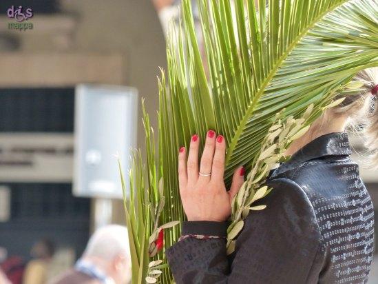 20140413 Domenica delle palme ulivo Piazza Erbe Verona