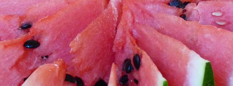 20140728 Cocomero anguria
