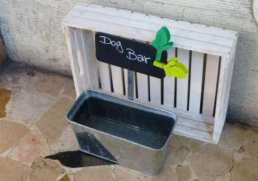 20140901 Dog Bar Ciotola per cani Verona