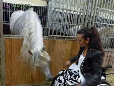 20150625 Cavalli White teatro equestre dismappa 740