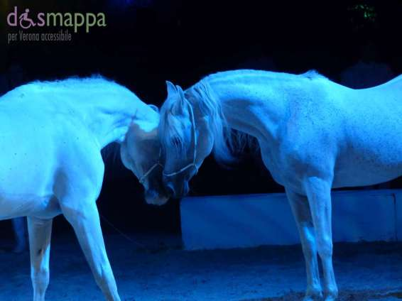 20150626 White teatro equestre Verona dismappa 1436