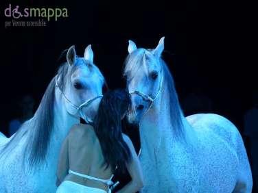 20150626 White teatro equestre Verona dismappa 1623