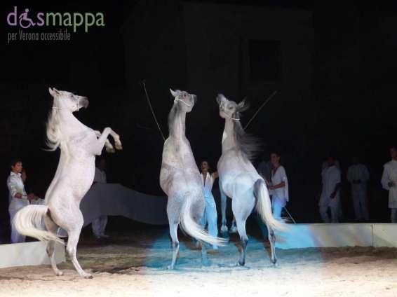 20150626 White teatro equestre Verona dismappa 1631