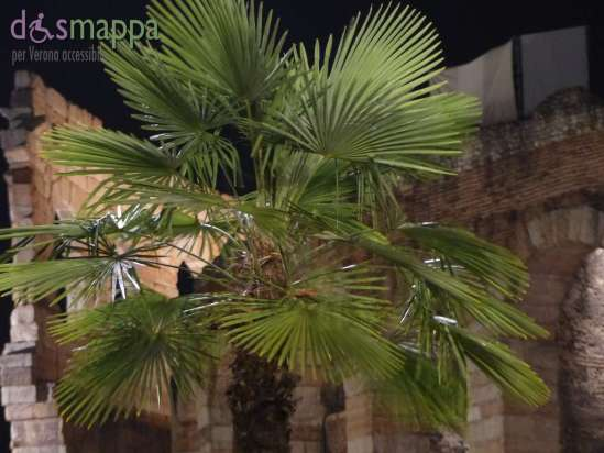 20150723 Palma Arena Verona accessibile dismappa