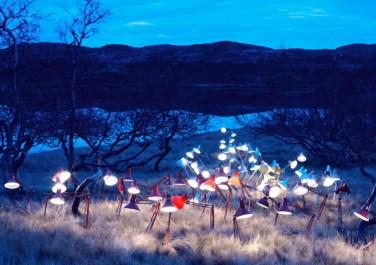 La mostra Resound with an echo (a cura di Walter Guadagnini): una personale di Rune Guneriussen, giovane artista norvegese che lavora con il mezzo fotografico. Il lavoro di Guneriussen si caratterizza come una sorta di transizione fra fotografia e installazione, dove la fotografia rappresenta il punto d'arrivo. Artista concettuale, Guneriussen realizza opere site specific, soprattutto all'interno dei contesti naturali che – a partire dal 2005 – ha ricercato in tutta la Norvegia. Non si tratta quindi di puri e semplici scatti fotografici, ma di sculture e installazioni concepite su larga scala, secondo un processo articolato che coinvolge l'oggetto, la sua storia, lo spazio circostante e il tempo. All'interno di questo iter, la fotografia rappresenta il momento conclusivo: la condensazione di un percorso creativo a più livelli. L'opera viene realizzata sul posto, in totale solitudine, nel quadro di paesaggi insoliti e selvaggi. Il contesto naturale svolge un ruolo duplice: si configura al tempo stesso come protagonista e cornice delle installazioni che vengono create con oggetti di uso quotidiano.