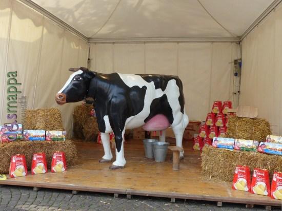 20151114 Mucca latte Piazza Bra Verona dismappa 1