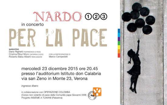 20151223 concertoo per la pace nardo trio verona
