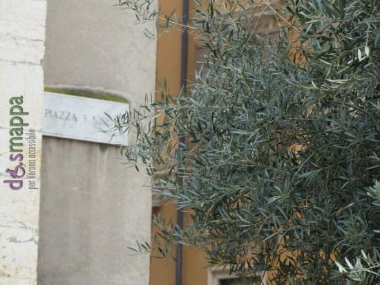 20160110 Ulivo Piazza San Nicolo Arena Verona dismappa