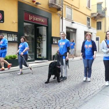 20160513 Run530 Verona corsa Casa disMappa 863