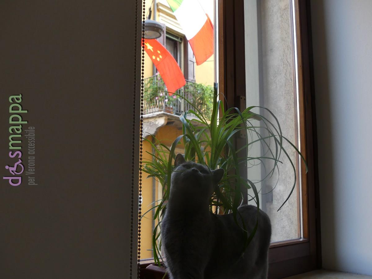 20160912-bandiere-tocati-casa-dismappa-verona-63
