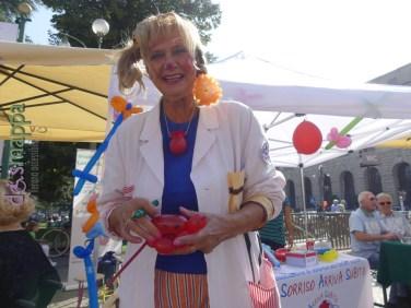 20160925-festa-del-volontariato-verona-dismappa-190