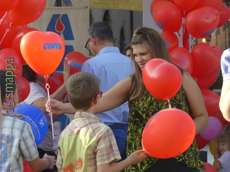 Avis Festa del volontariato Verona
