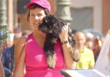 20160925-ragazza-cane-in-spalla-verona-dismappa-61