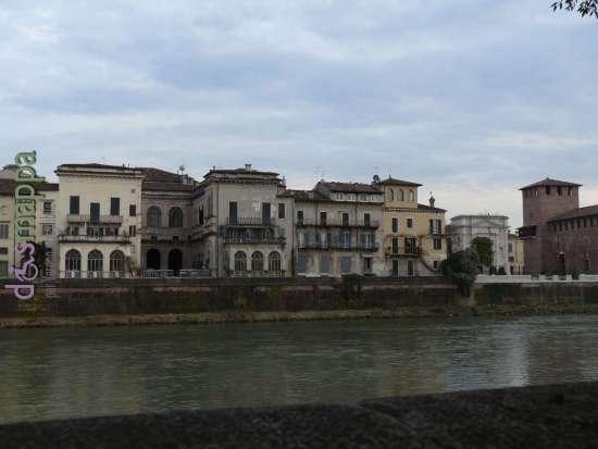 20140225 Roseto serra lungadige Verona dismappa 616