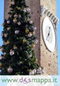l'albero e la torre