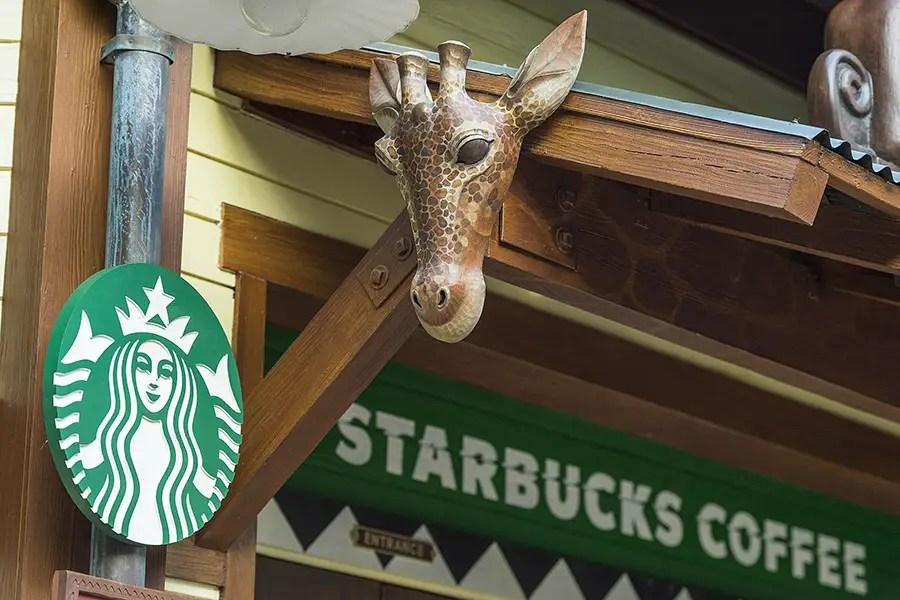 Disney World Starbucks