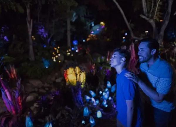 Disney Rides After Dark
