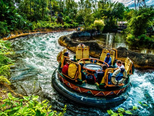 kali river rapids in animal kingdom is one of the best disney rides for adults