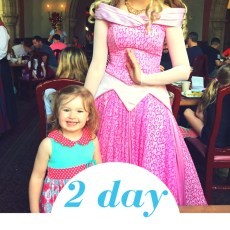 2 Day Disney World Itinerary for Toddlers (Comprehensive Plan)