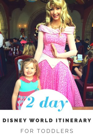 2 Day Disney World Toddler Itinerary (Comprehensive Plan)