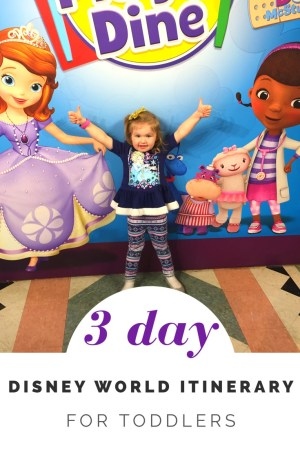 3 day Disney World Itinerary and Plan