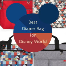 The Best Diaper Bag for Disney World
