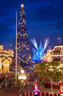 Walt Disney World Christmas Trees