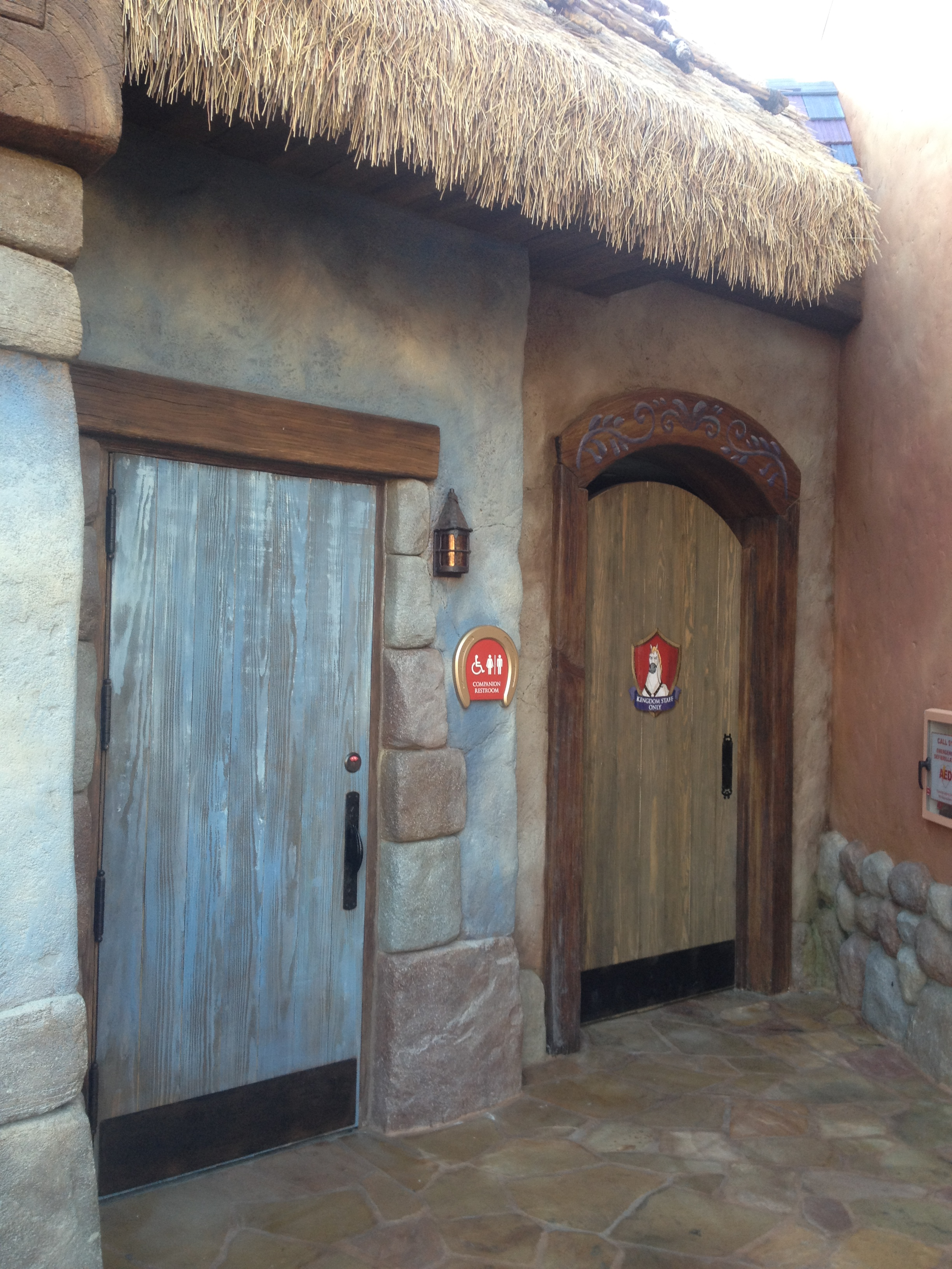 Tour of the 8 Million New Fantasyland Tangled Bathroom