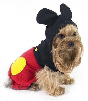 & Disney Discovery- Disney Halloween Costumes For Dogs (PART 1)