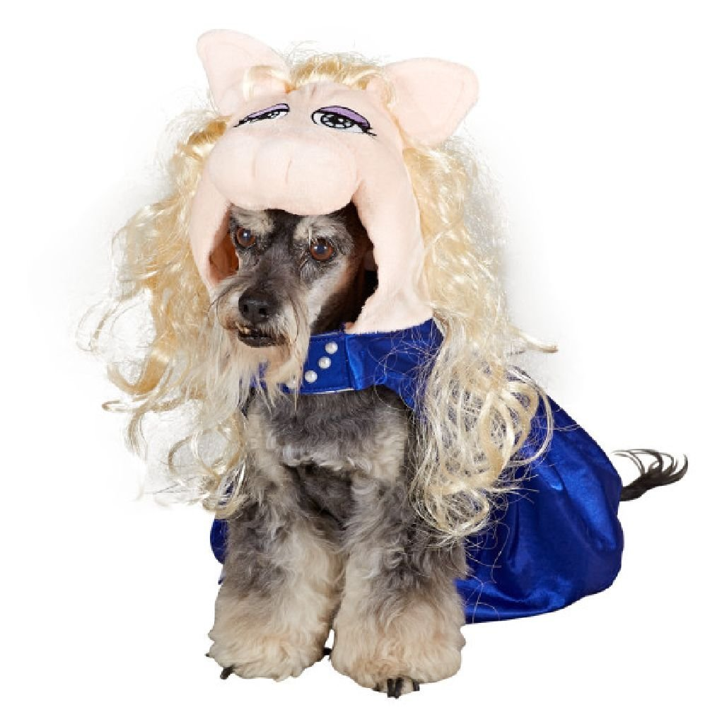 It is also a little more costly. If you want details on the above pictured Mickey costume you can find it HERE. If you want the cheaper one ...  sc 1 st  The Disney Fashionista & Disney Discovery- Disney Halloween Costumes For Dogs (PART 1)