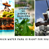 Disney'e Typhoon Lagoon vs Disney's Blizzard Beach Water Parks Walt Disney World Resort