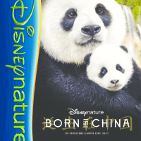 This Earth Day Disneynature Invites You To Journey With Them- Born In China