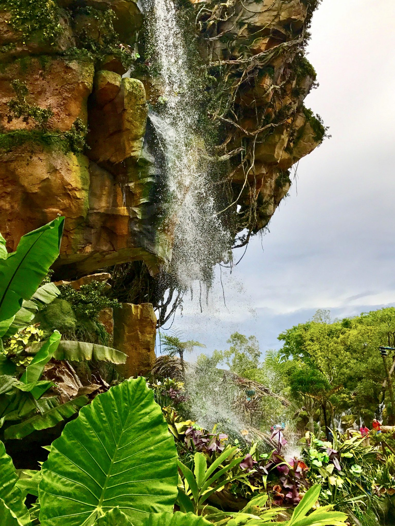 Pandora-The World Of Avatar Walt Disney World -