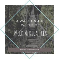Take A Walk On The Wild Side-The Wild Africa Trek At Disney's Animal Kingdom