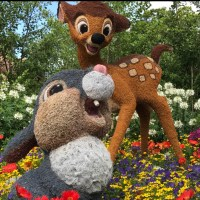 This Mother's Day Spoil Mom With A Celebration To Remember At Disney Springs At Walt Disney World