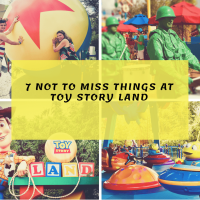 Come Play In Andy's Backyard-7 Toyriffic Things Not To Miss At Toy Story Land