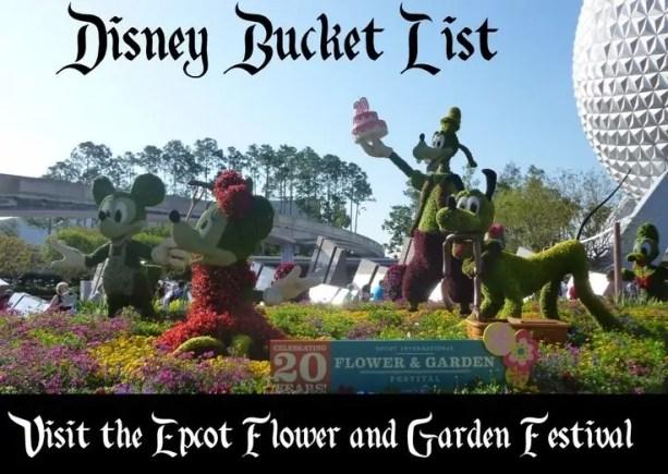 bucket list - flower and garden
