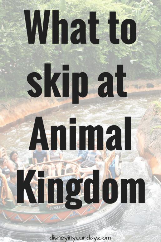 skip at Animal Kingdom - Disney in your Day