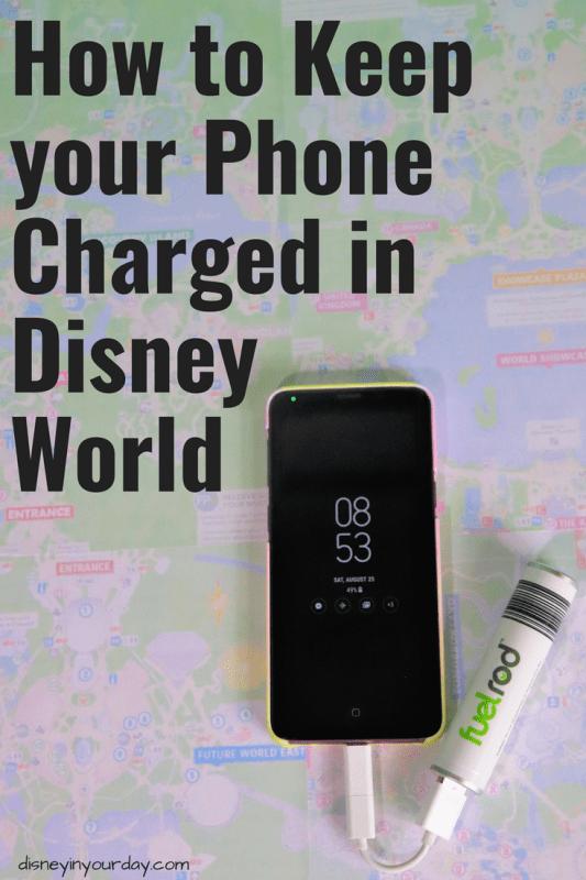 Disney World Fuel Rod - Disney in your Day
